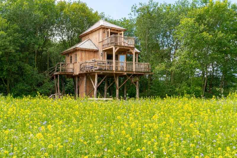 Boomhut Drenthe camping landgoed Tolhek